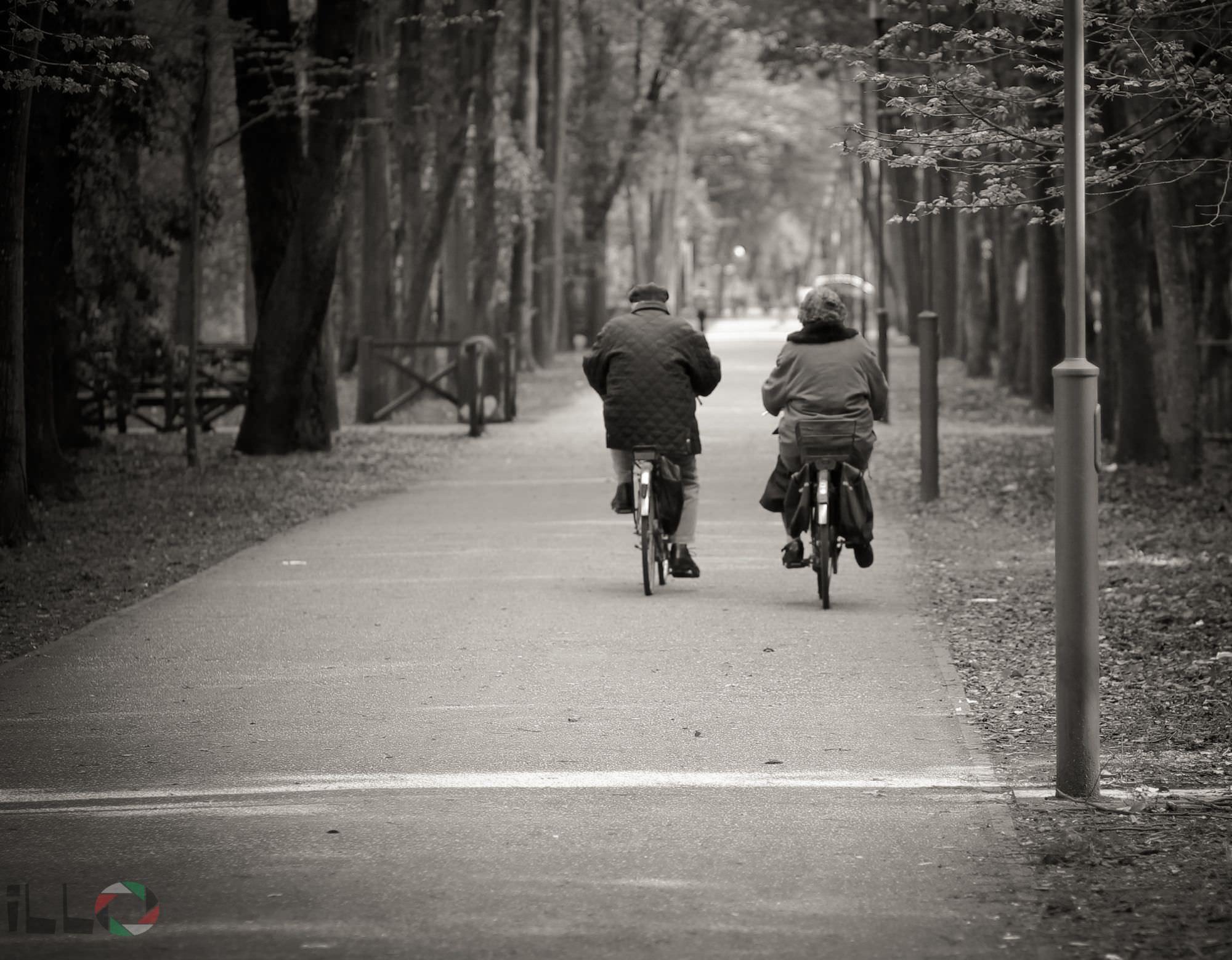 (foto Andrea Zani)