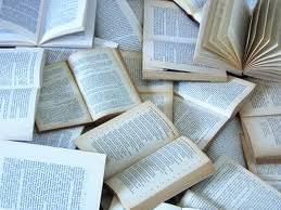il piacere dei libri