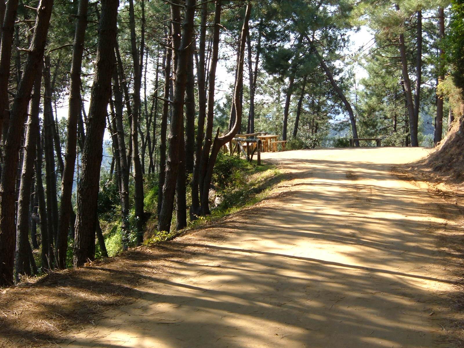 Avvicinamento alla montagna per i giovani con il Cai Viareggio