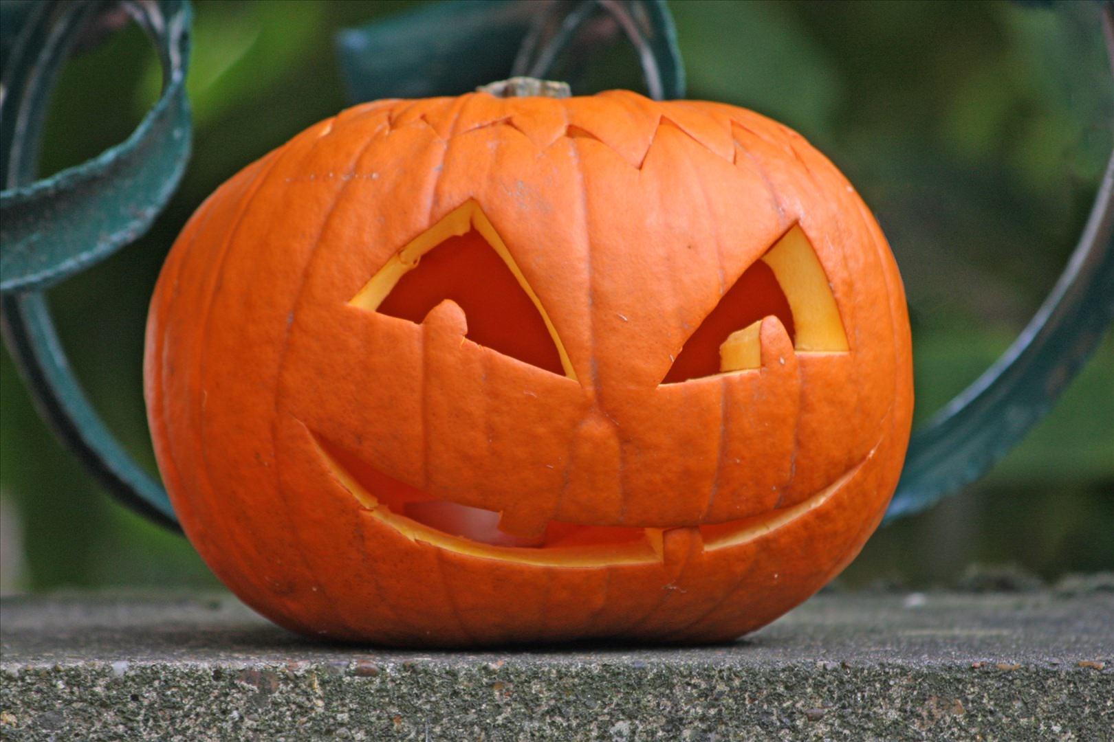 Halloween ritorna la festa a tonfano organizzata da - Hacer calabaza halloween ...