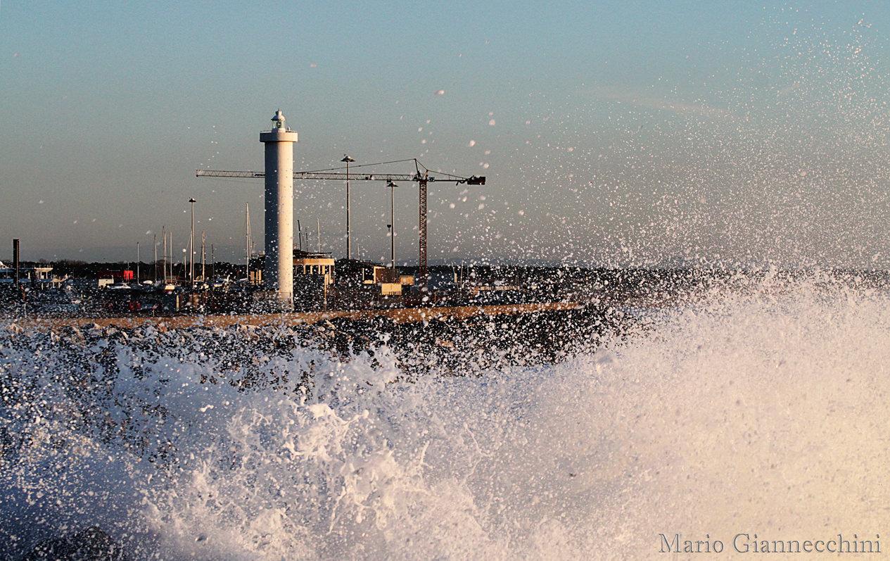 """""""Il porto è e deve rimanere della città di Viareggio, parliamo di investimenti e non di costi"""""""