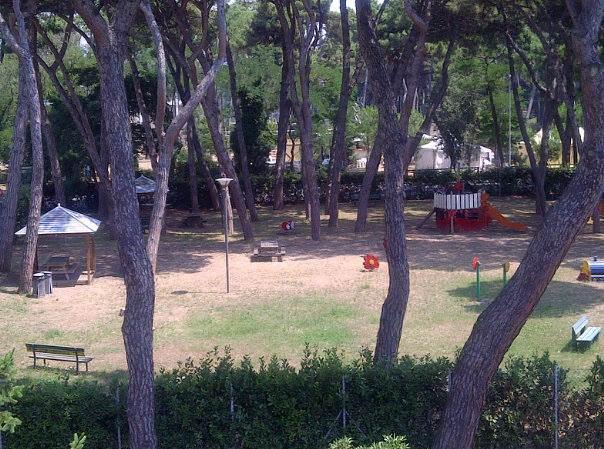 """Viareggio, degrado nel parco giochi. Griva: """"Chiusura nelle ore notturne"""""""