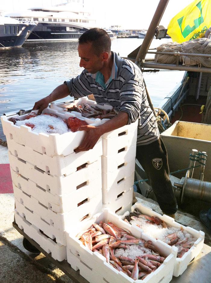 """""""Rischio di vongole turche nel piatto dei ristoranti"""": i pescatori chiedono l'etichettatura obbligatoria"""