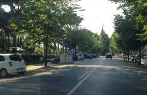 Trans Viareggio