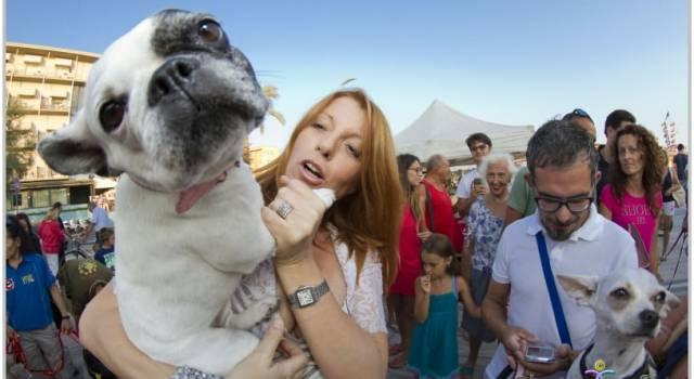 Michela Brambilla circondata da decine di cani a Lido di Camaiore: le foto