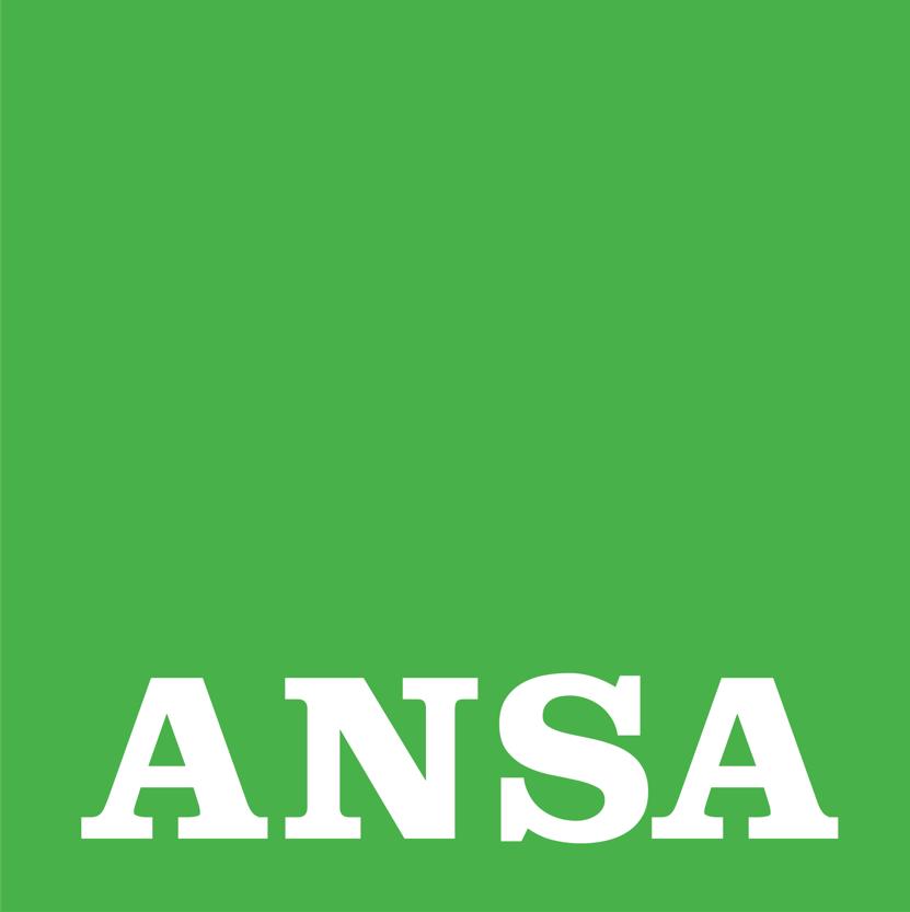 Anche l'Ansa parla del concorso fotografico di VersiliaToday