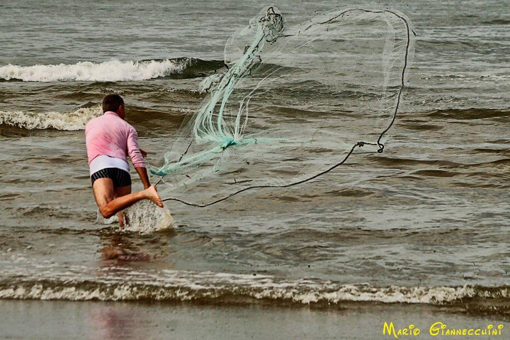 A Viareggio il convegno per promuovere la pesca sostenibile delle telline sulle coste toscane