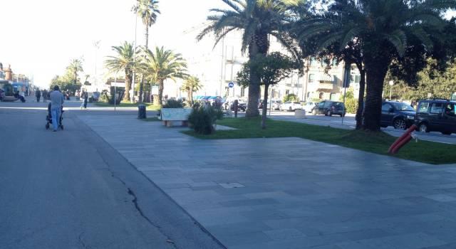 A Viareggio la corsa al calar del sole. Ospite il campione olimpico Stefano Baldini