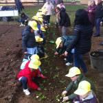 bambini agricoltura coldiretti -2