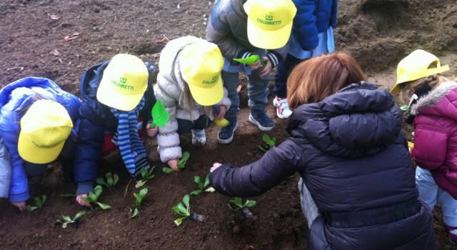 Le scuole di Pietrasanta si sfidano alle AgriOlimpiadi