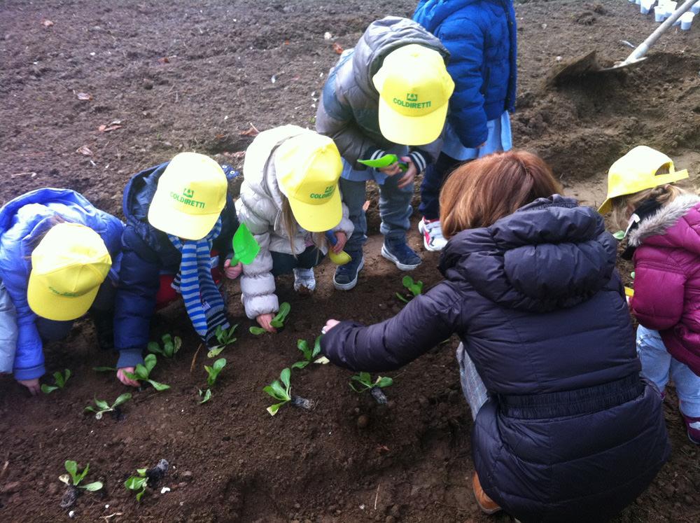 """""""Agri-Olimpiadi"""" di Coldiretti, posticipati al 31 gennaio i termini per iscrivere le scuole"""