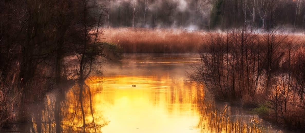 Dal Lago al Padule. Nasce la Pro Loco di Massarosa