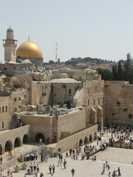 Una scrittrice viareggina segretario politico del circolo Pd di Gerusalemme