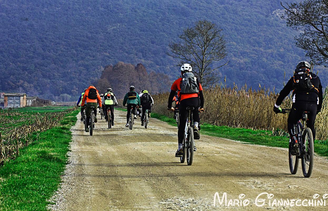 Il Consiglio dell'Unione dei Comuni approva il piano di mobilità ciclistica della Versilia