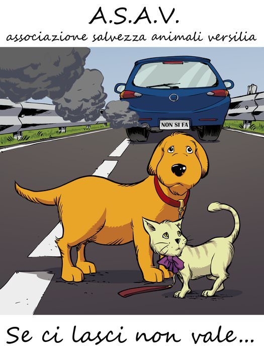 L'Associazione Salvezza Animali Versilia fuori dal mercato