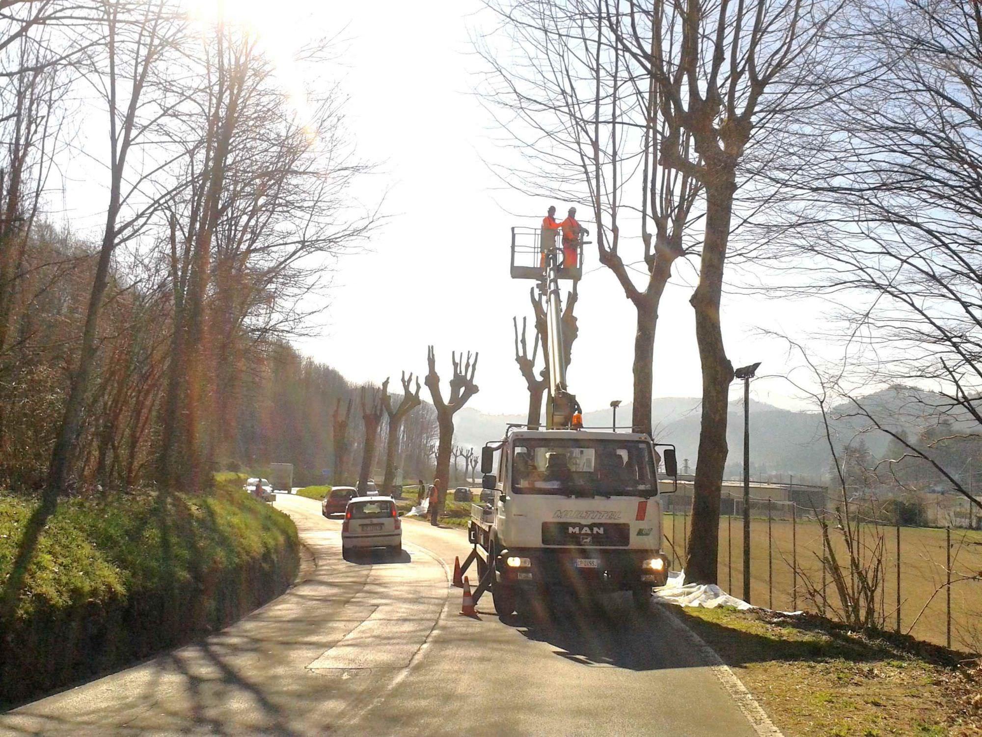 Taglio di un albero, chiusa via XX Settembre
