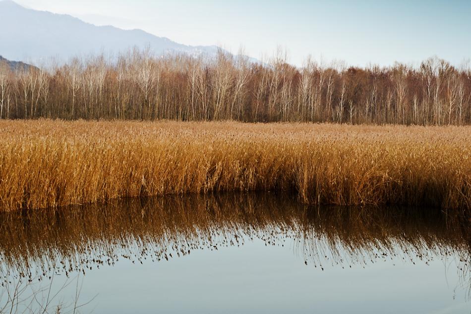 """""""Lago di Porta a rischio inquinamento, le istituzioni fermino questo scempio"""""""