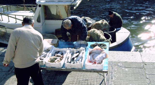 Pesca sostenibile, riduzione dello scarto e gestione delle risorse ittiche: convegno a Viareggio