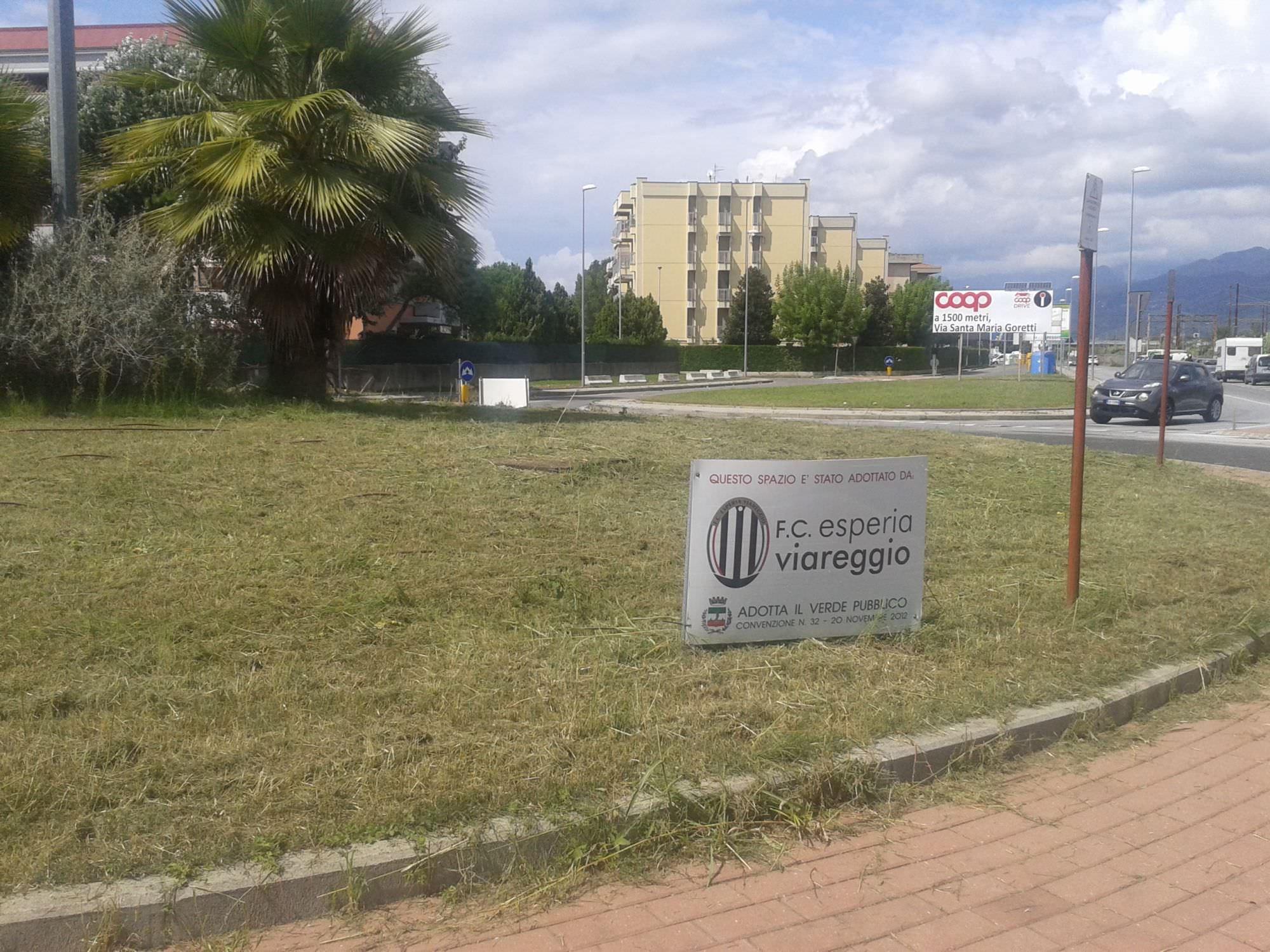 Tagliata l'erba dell'aiuola adottata dall'Esperia Viareggio