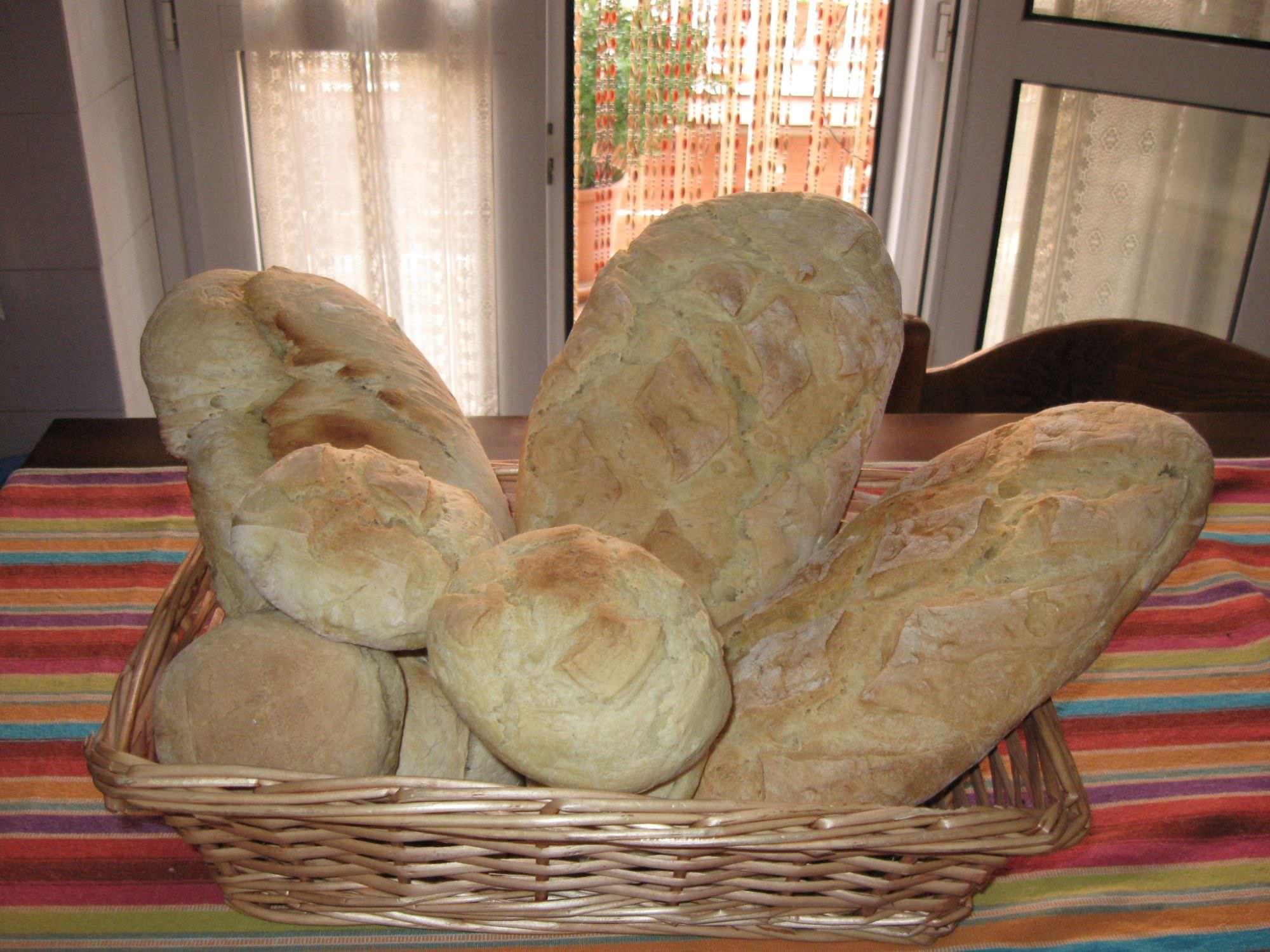 La storia del tipico pane toscano. A spasso con Galatea