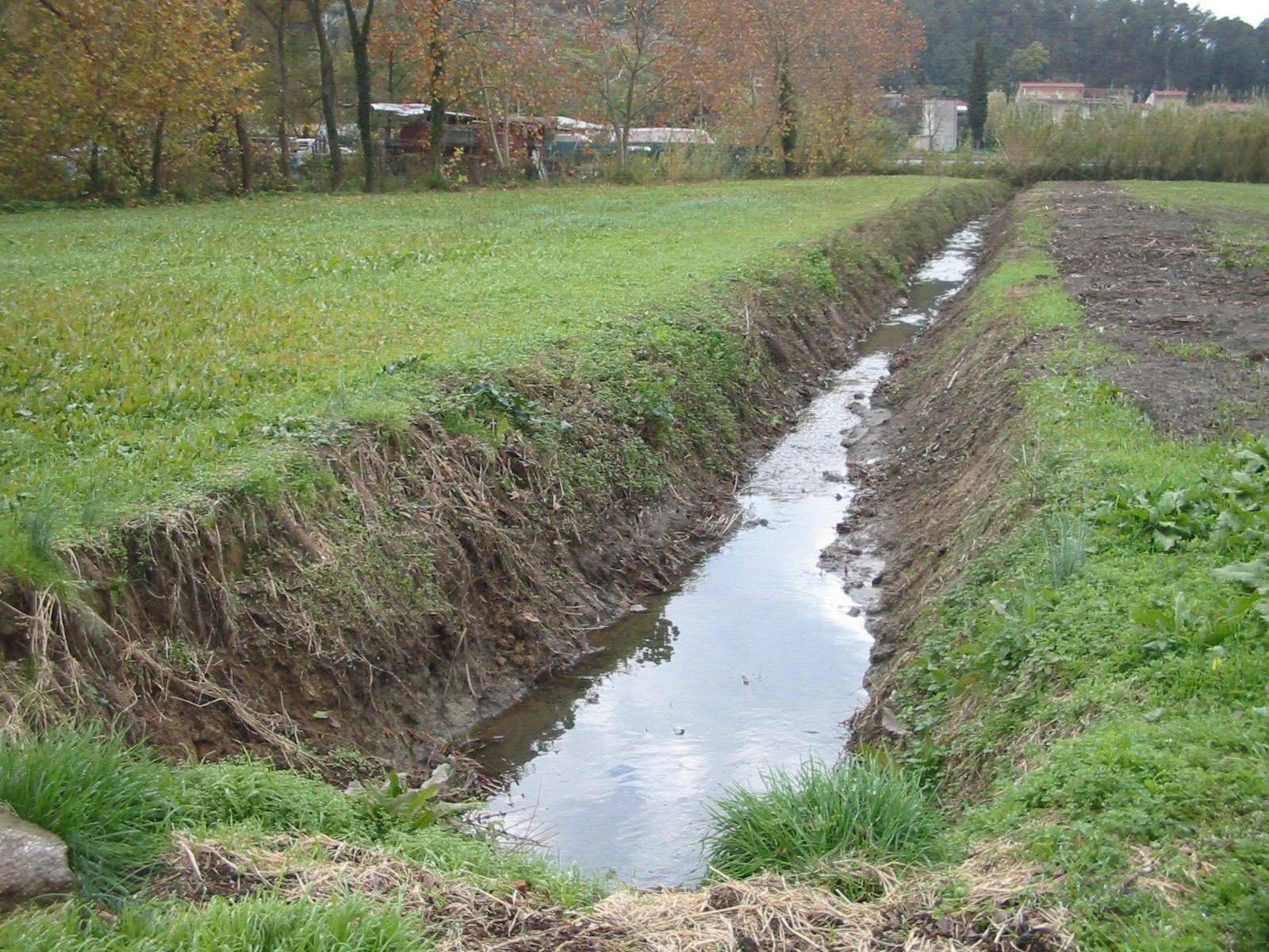 Fossi e terreni incolti. Il sindaco emette un'ordinanza  per la pulizia