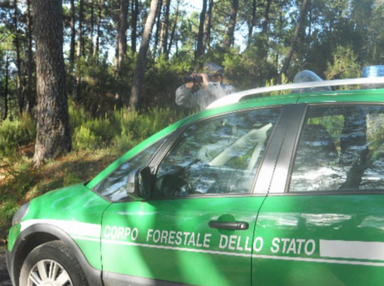 Presentato il Rapporto 2015 del Corpo Forestale dello Stato in Toscana