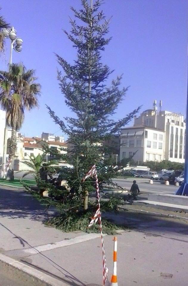 """""""Non facciamoci portare via anche il Natale"""". La mobilitazione su Facebook per abbellire il triste albero di Piazza Mazzini"""