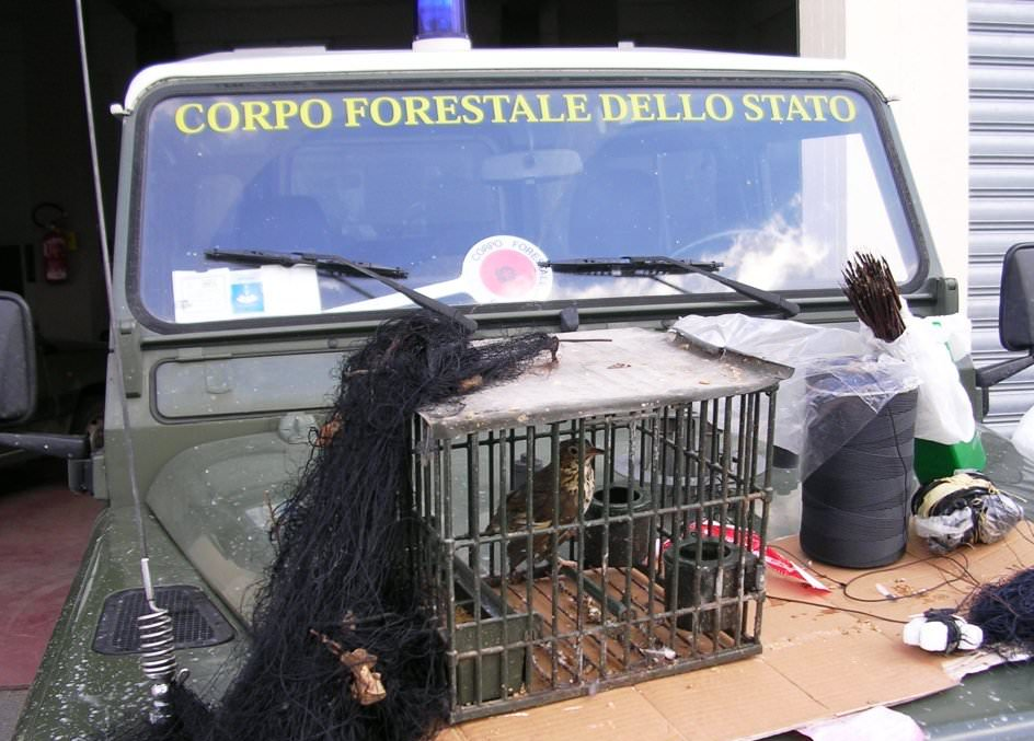 Caccia di frodo. Sequestrate reti di cattura, rimessi in libertà tutti gli uccelli imprigionati