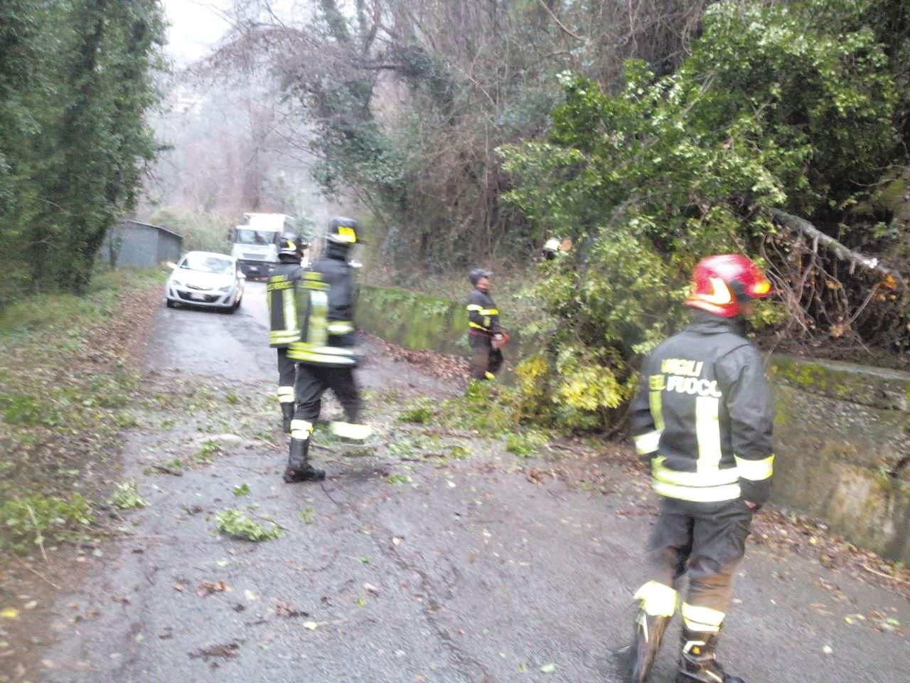 Cadono i rami, strada interrotta a Casoli (foto)