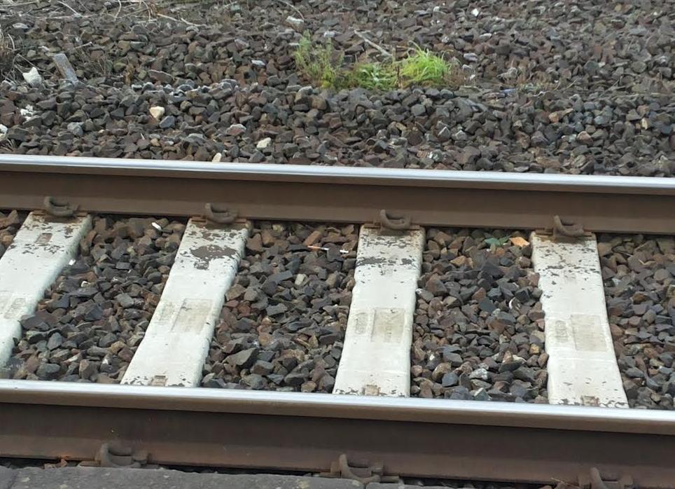 Muore investito da un treno in transito: 80 passeggeri trasferiti su un altro convoglio