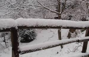 neve camaiore