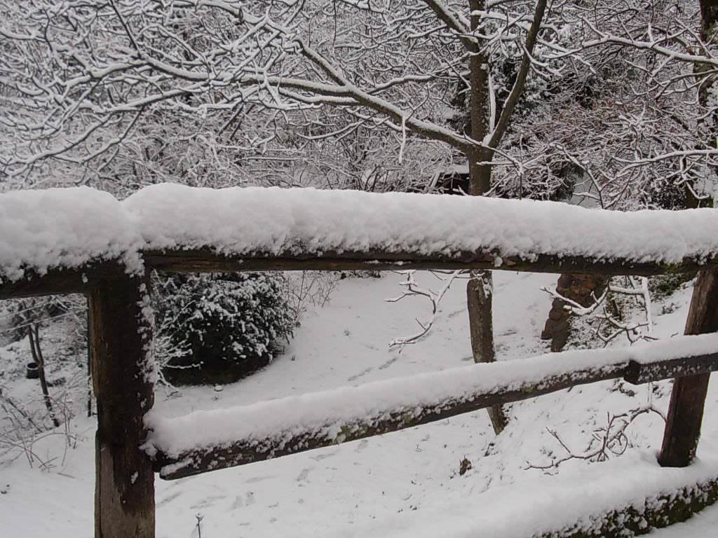 Maltempo, codice giallo per neve e ghiaccio per domenica 16 dicembre