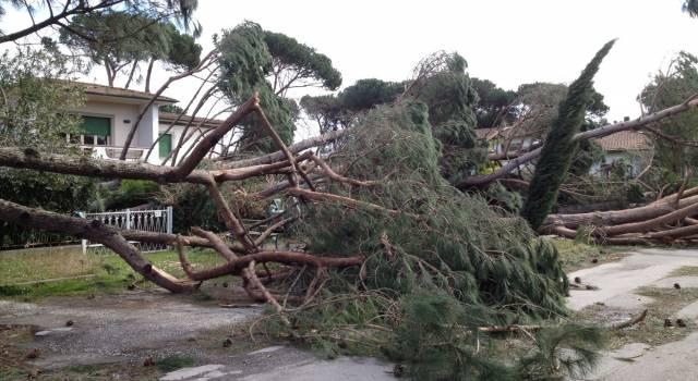 Consulenze Legali Gratuite per cittadini danni post uragano