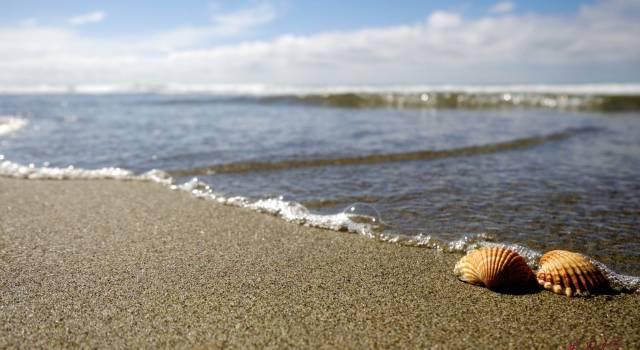 Scatta foto ai bambini nudi, allarme in spiaggia
