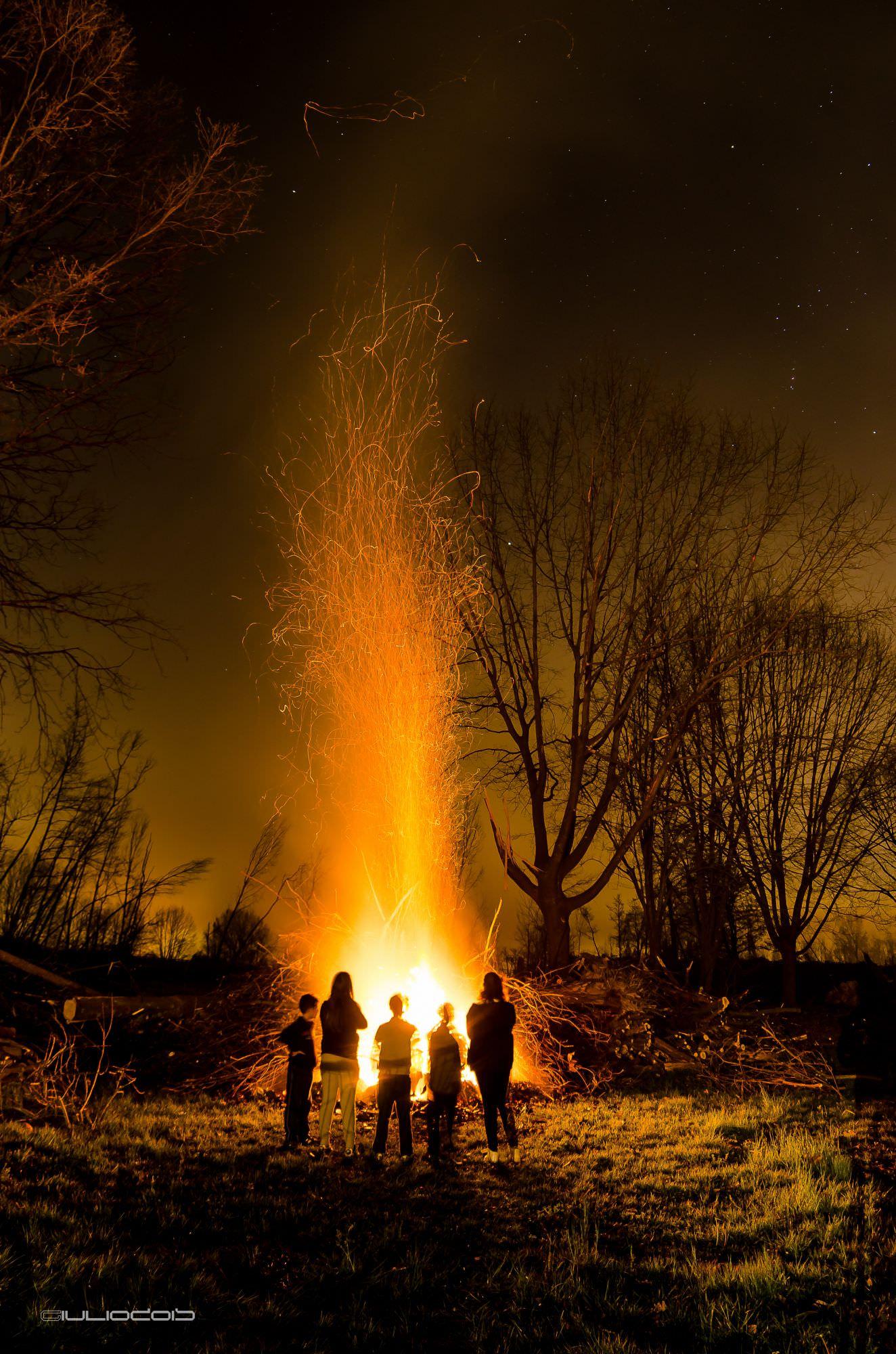 """A Forte dei Marmi la """"focata"""" con gli alberi caduti il 5 marzo"""