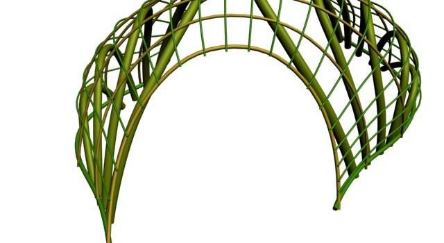 Dal bambuseto di Camaiore alla Fabbrica del Vapore di Milano. Ecco CanyaViva