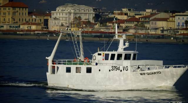 Fermo pesca, allarme di Coldiretti: per un mese pesce congelato e straniero