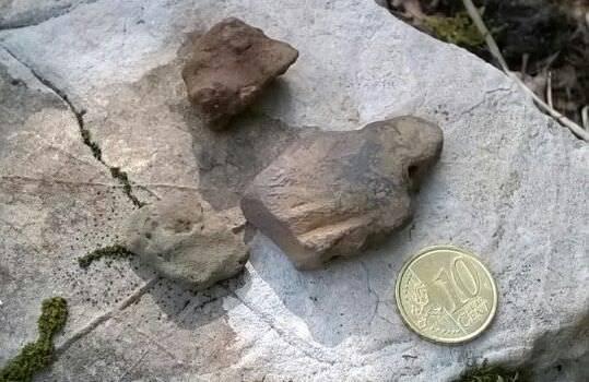 Altri reperti archeologici scoperti a Camaiore (foto)