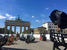 I cavalli di Lapidarium da Pietrasanta a Berlino