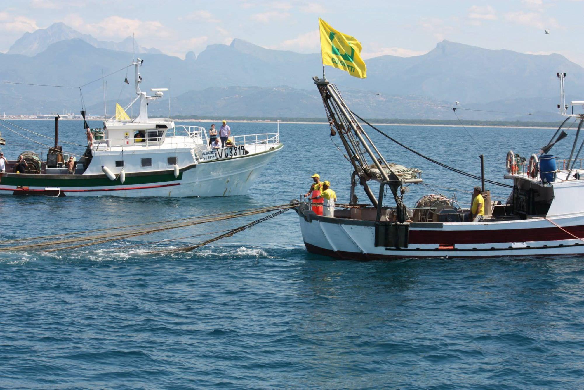 Con la filiera del pesce cresce il fatturato delle imprese ittiche in Toscana (+150%)