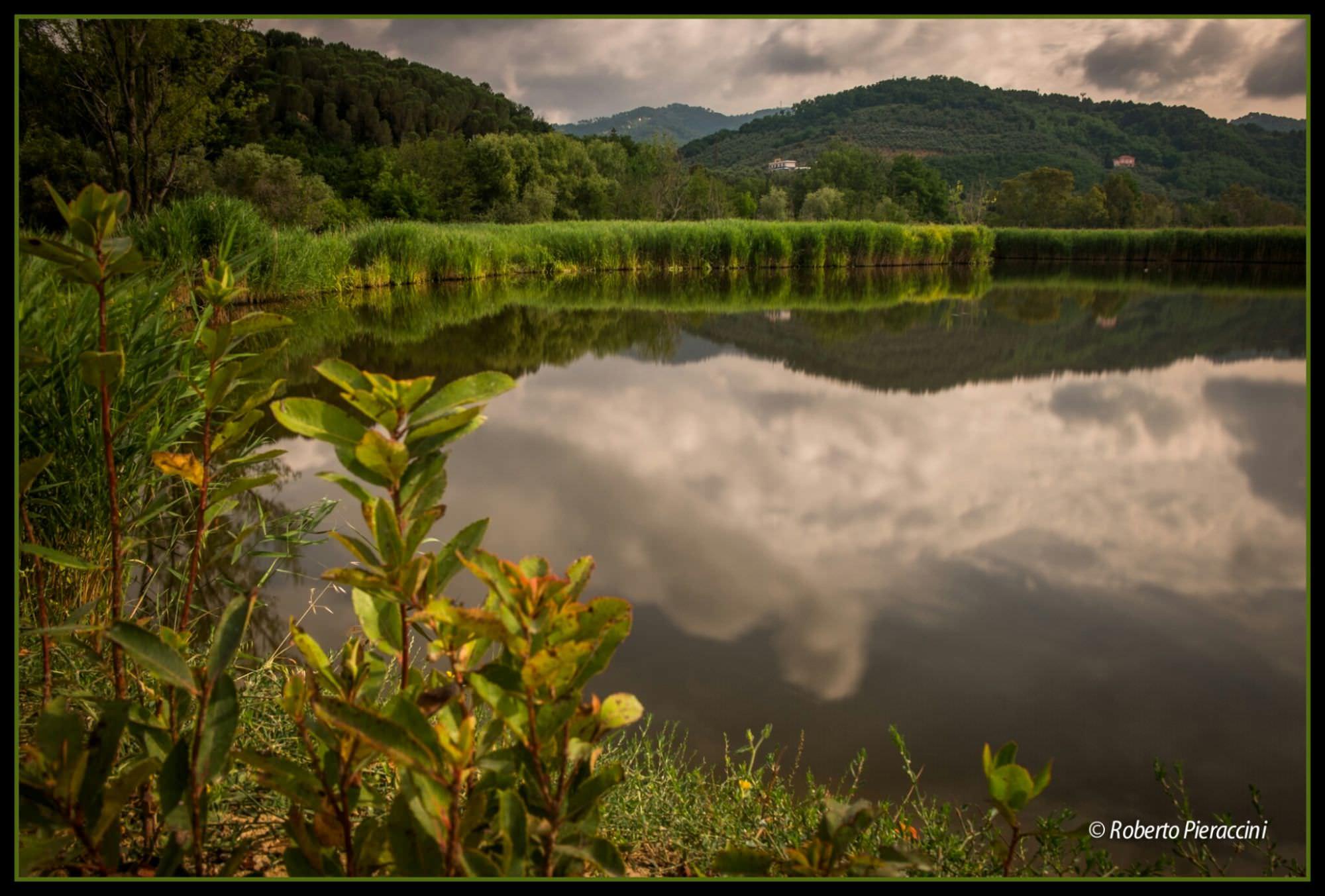 Una gita al Lago di Massaciuccoli