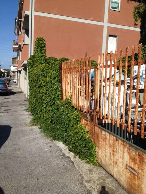 Topi in via Pascoli, la furia dei residenti