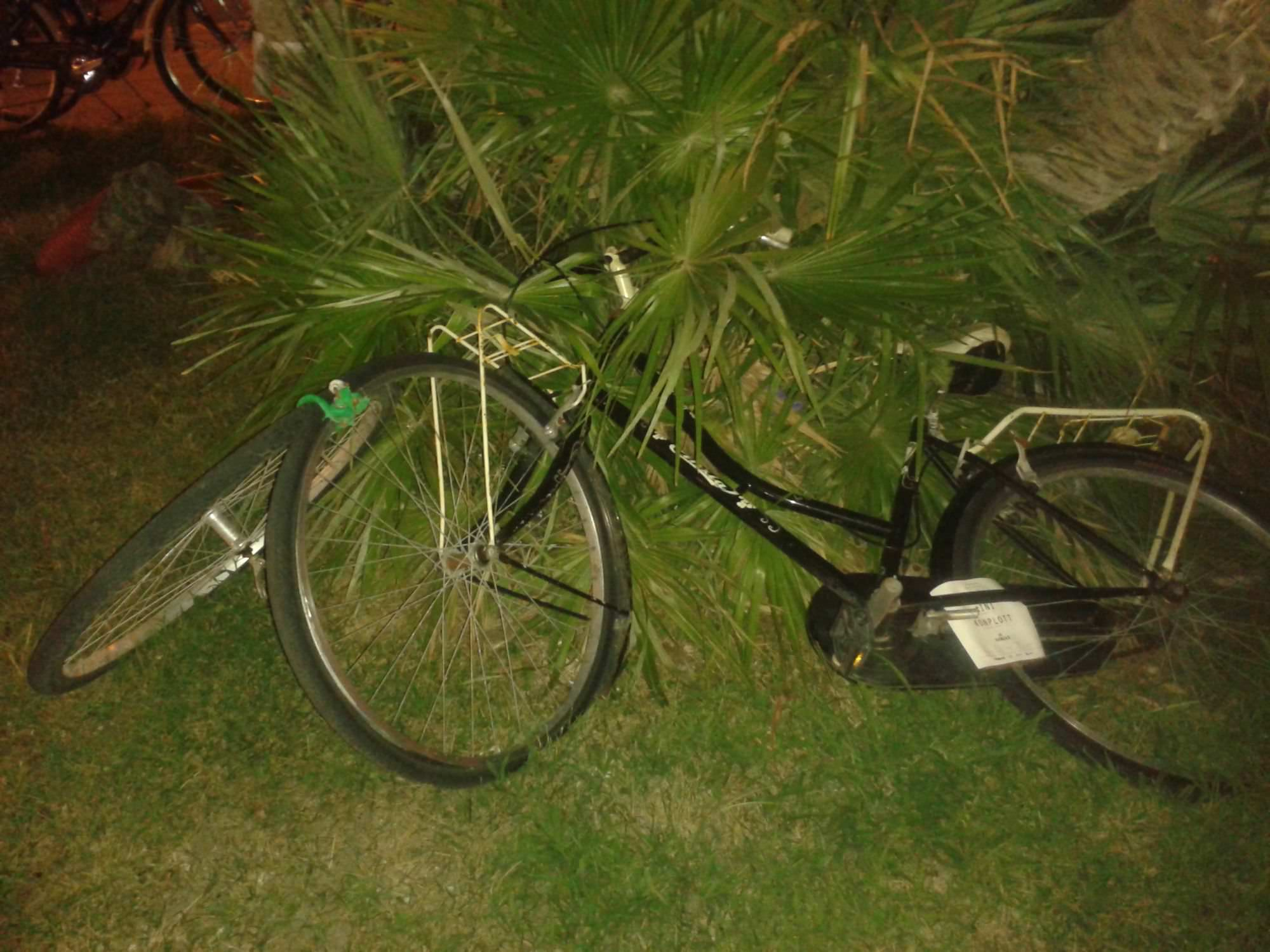 Bici abbandonata in un'aiuola di piazza Mazzini