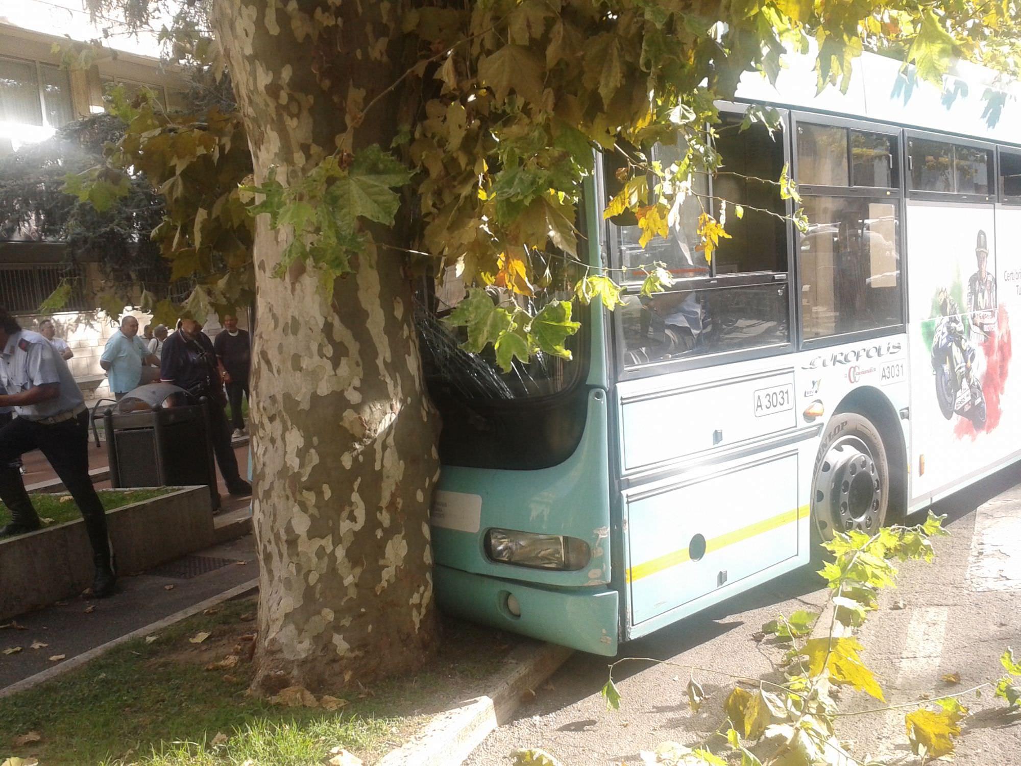 """Malore autista e autobus contro un albero. """"Deterioramento delle condizioni di vita e di lavoro dei tranvieri"""""""