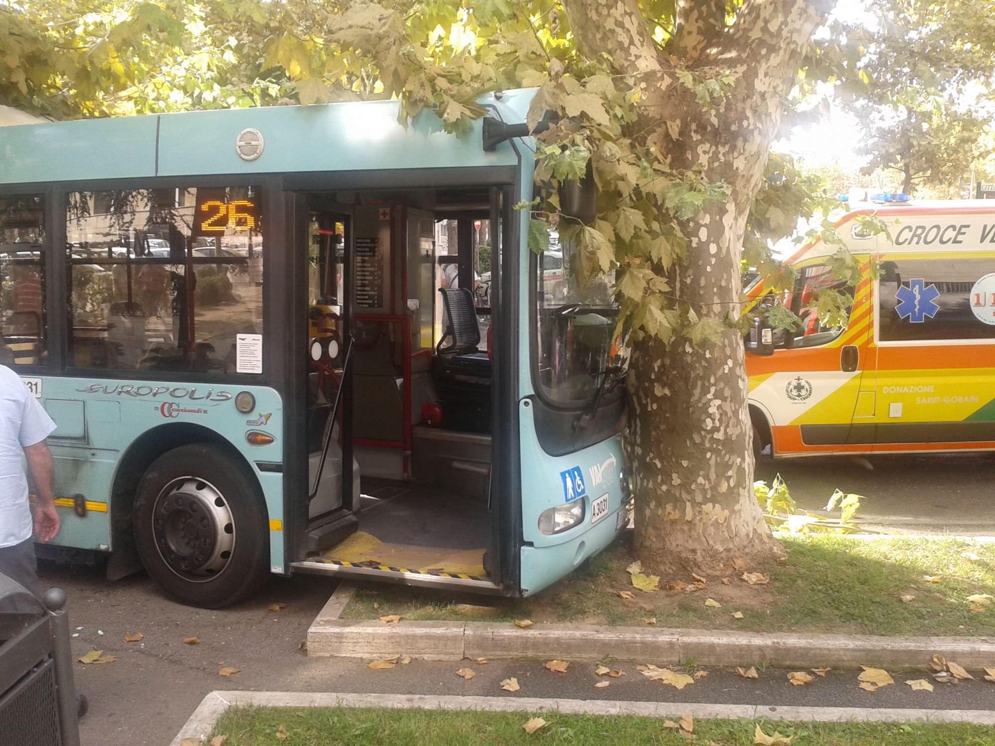 Malore per l'autista, bus contro un albero