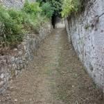 Foto Via Accesso Rocca di Sala Manutenzione Verde Pietrasanta