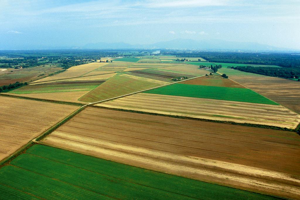 La regione deve fare di pi per aiutare l agricoltura for Eventi in toscana oggi