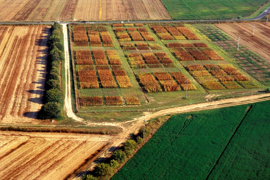 Agricoltura, dopo l'Imu via anche l'Irpef