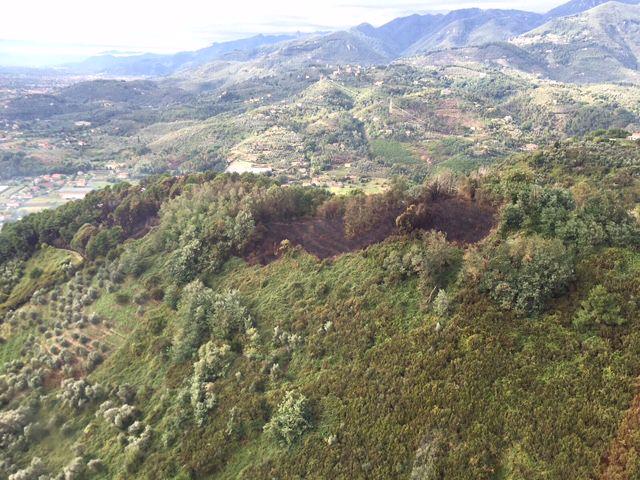 Incendi nei boschi, la provincia più colpita è Lucca