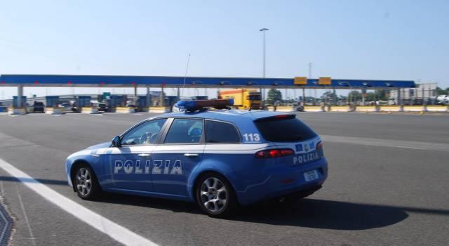 Cinghiali in A11, 25 chilometri di Firenze Mare chiusi per permettere la cattura